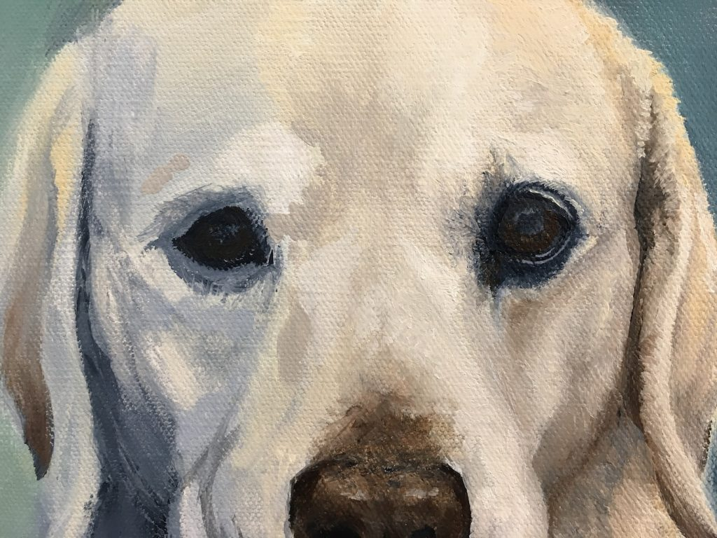 pet portrait artist finished and unfinished eye