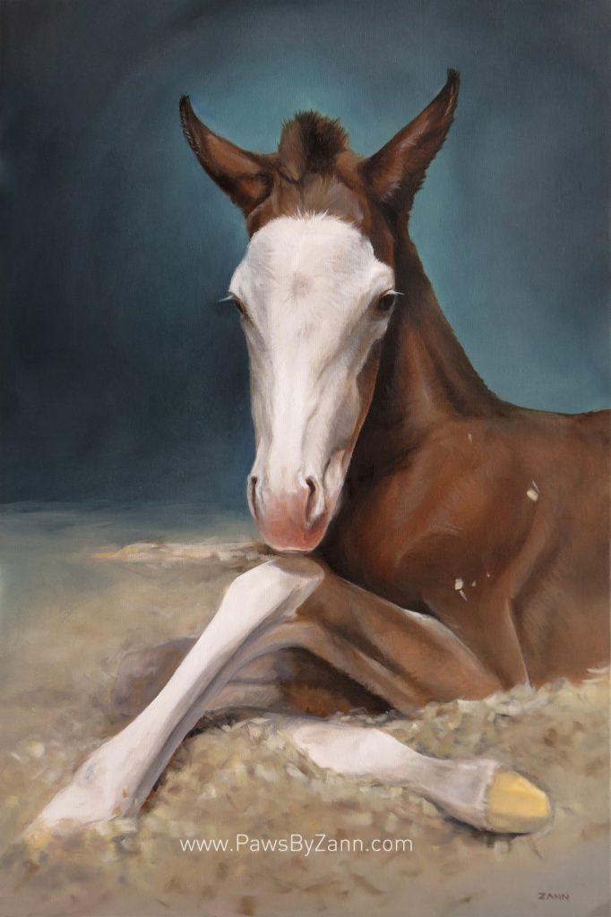 Horse Portrait Painting Art by zann