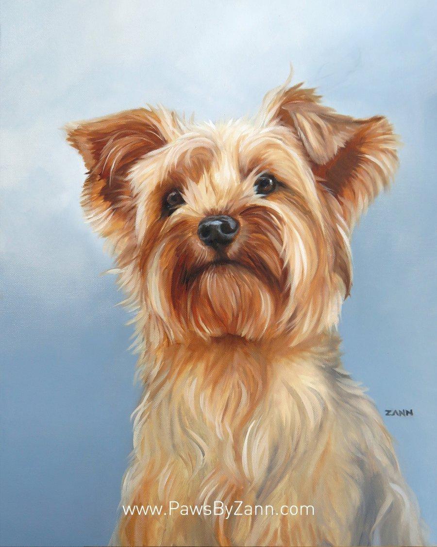 Yorkie portrait painting