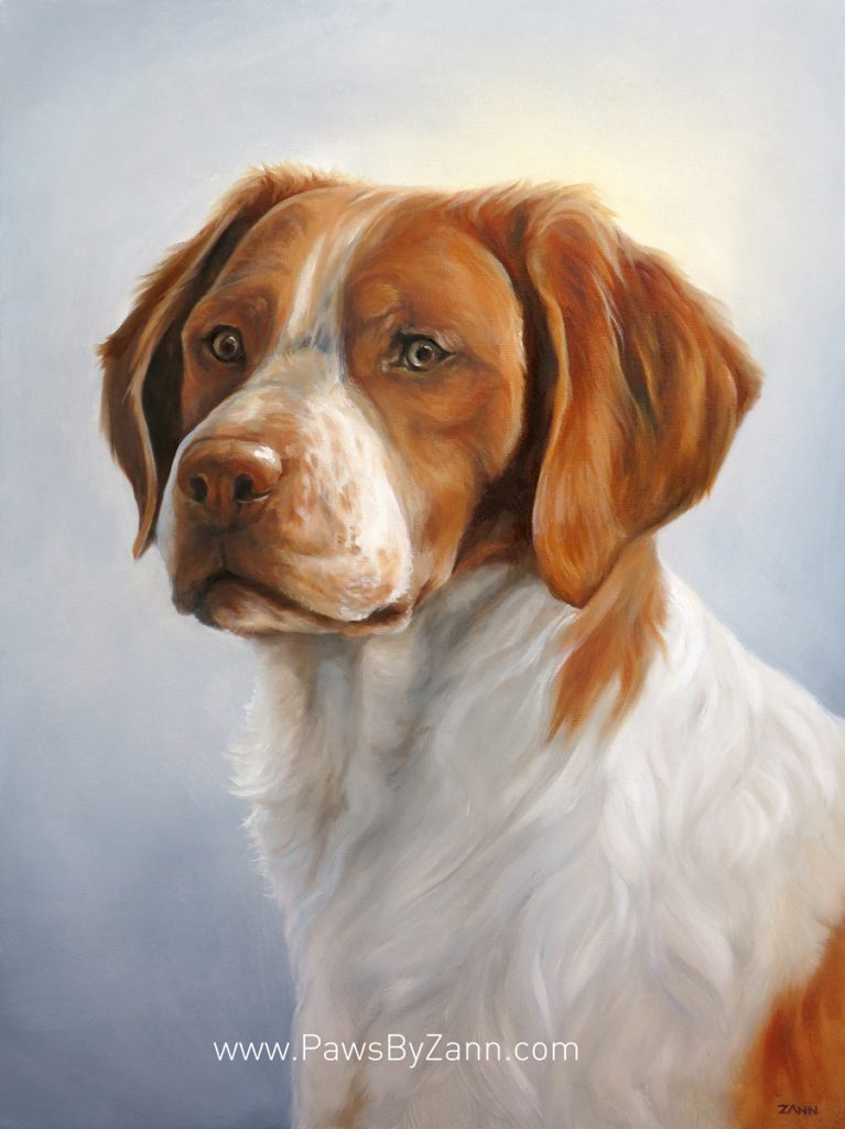 Brittany Hunting Dog Oil Painting