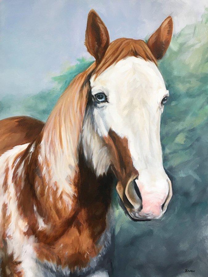Luna Horse Portrait by Zann Hemphill