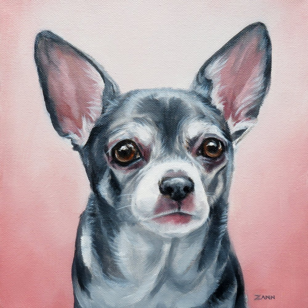 Custom Pet Portraits Oil Paintings By Zann Hemphill