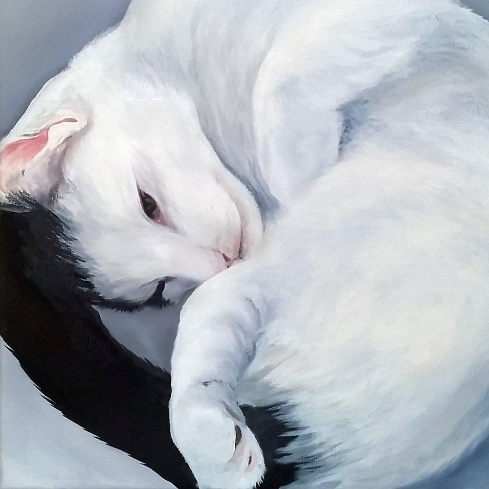 Cat Painting Art by Zann