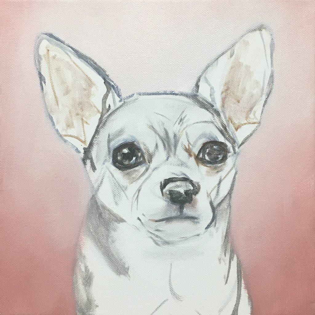 lulu chihuahua sketch art process