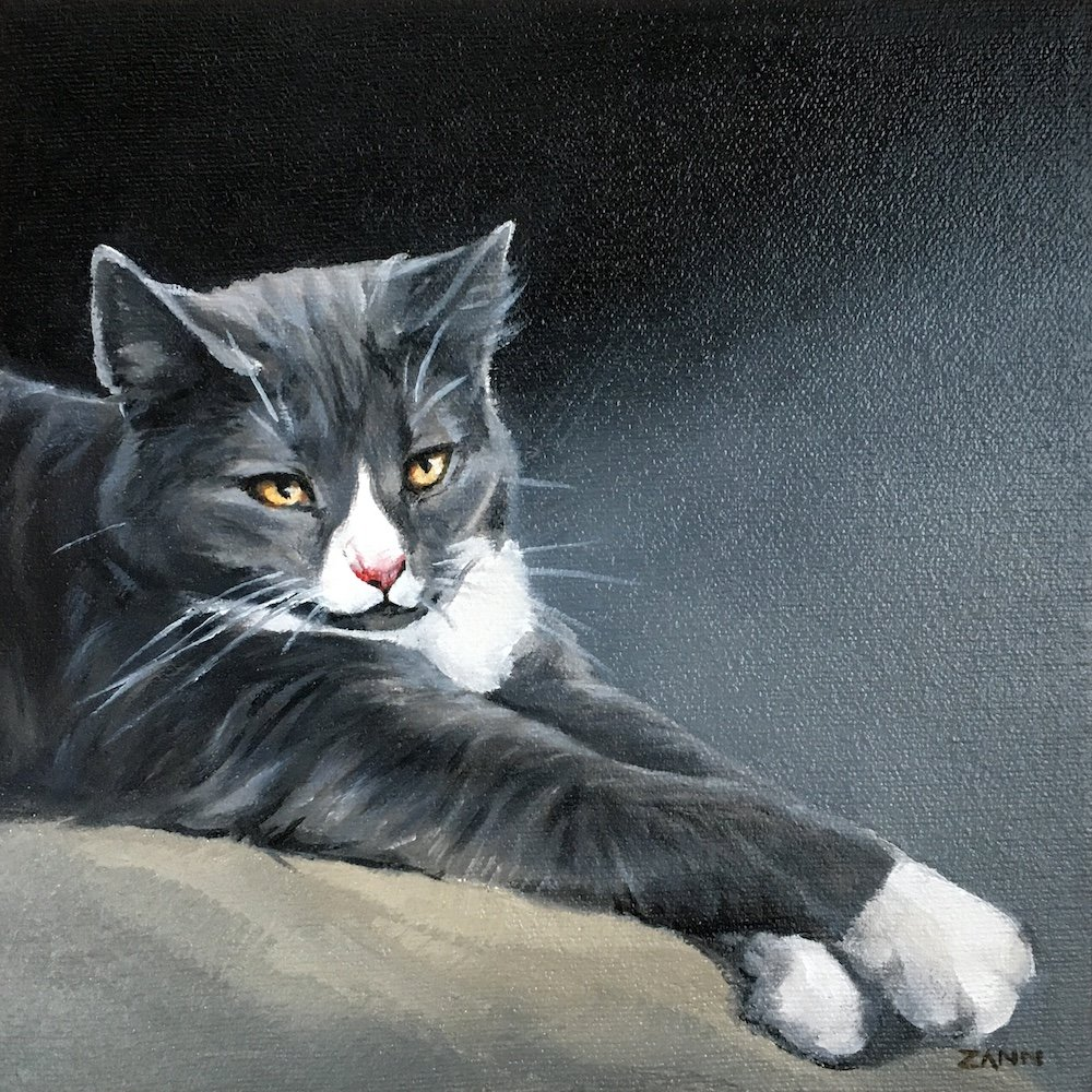 Cat portrait by Zann