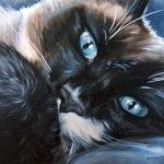 Custom Cat portrait by Zann Hemphill