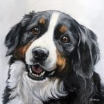 Happy Bernese Mountain Dog Portrait from Photo Painting Art