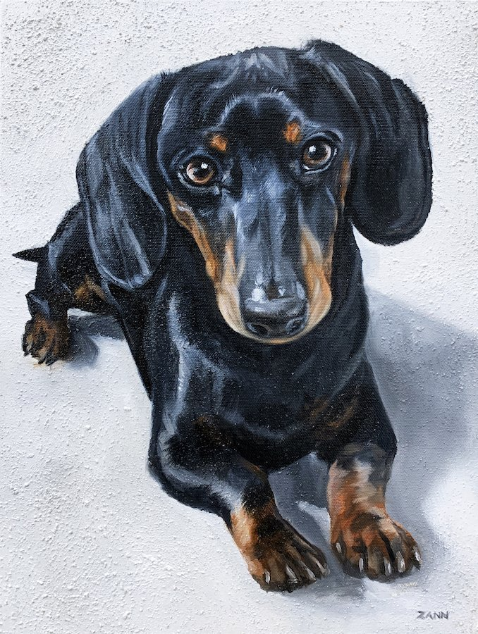 Dashchund Painting Dog Portrait
