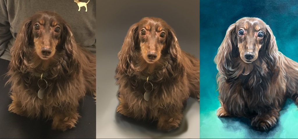 pet portrait dog painting dachshund 3 steps