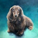 Dog Portrait Fudge the Dachshund, painted in oil by zann hemphill