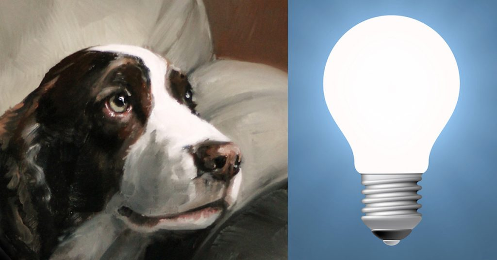 Pet Art Lighting in Pet Portraits