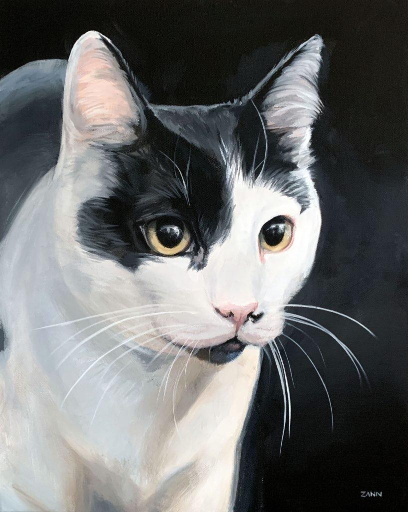 Custom Pet Portrait of a Cat on Black Background Animal Artist Zann Hemphill