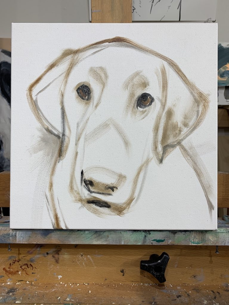 chocolate lab oil painting sketch process