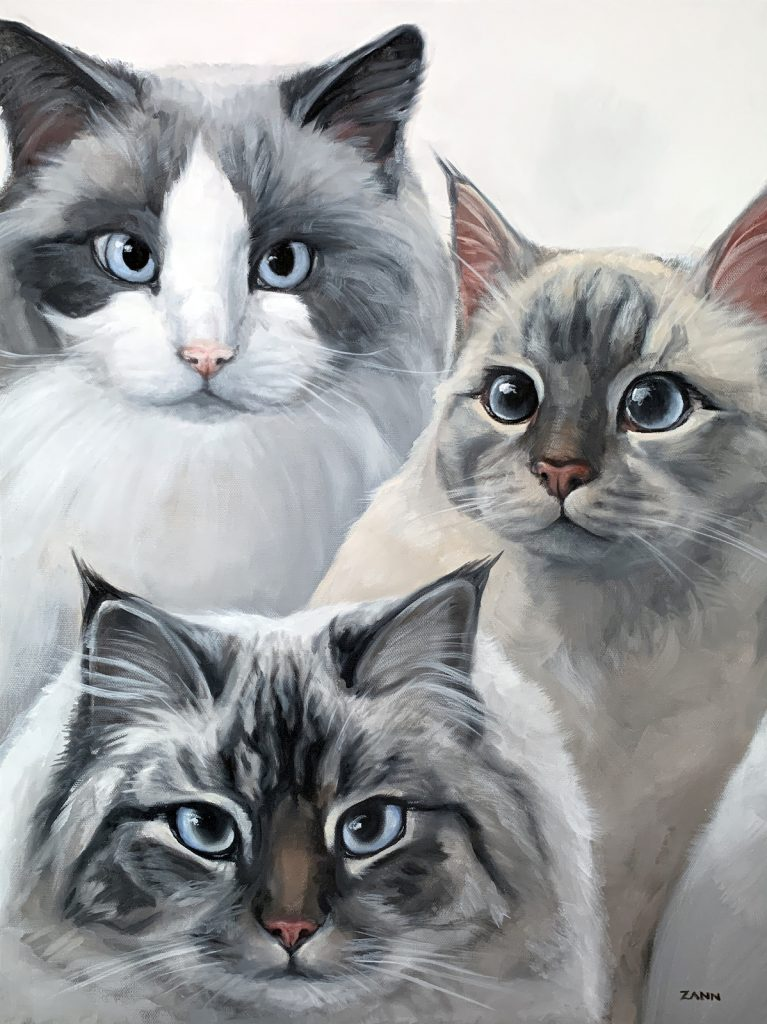Ragdoll Cats Painting in Oil by Zann