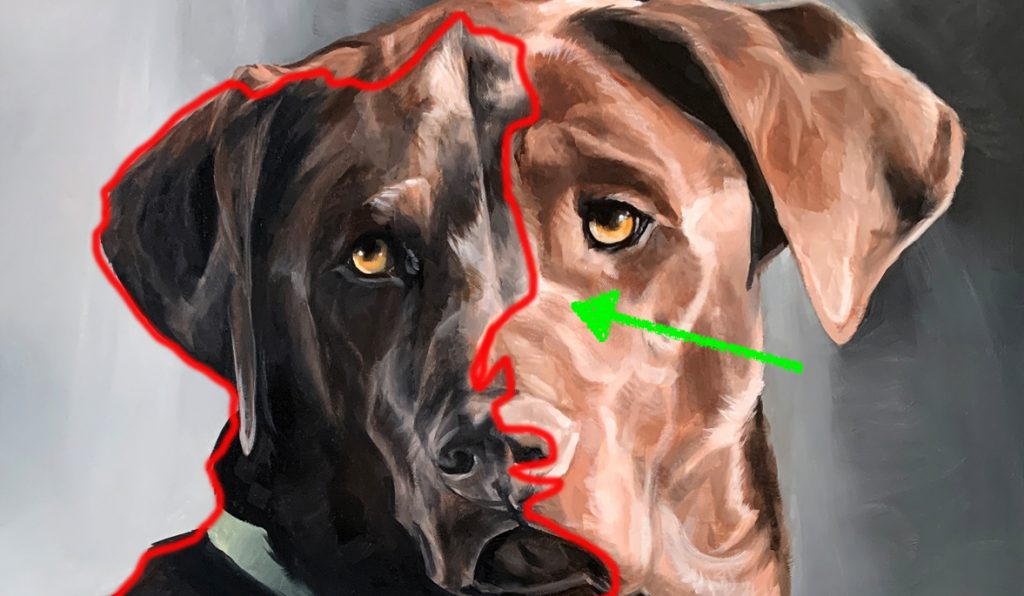 Oil Dog Painting Analysis