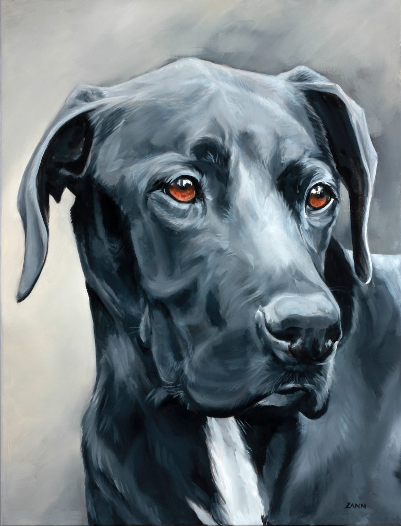 Large Custom Pet Portrait in Oil
