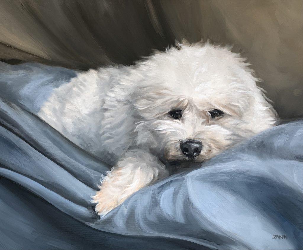 Poodle Painting Pet Portrait in Oil
