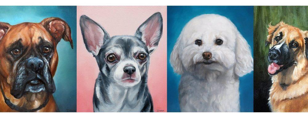 colourful pet portraits