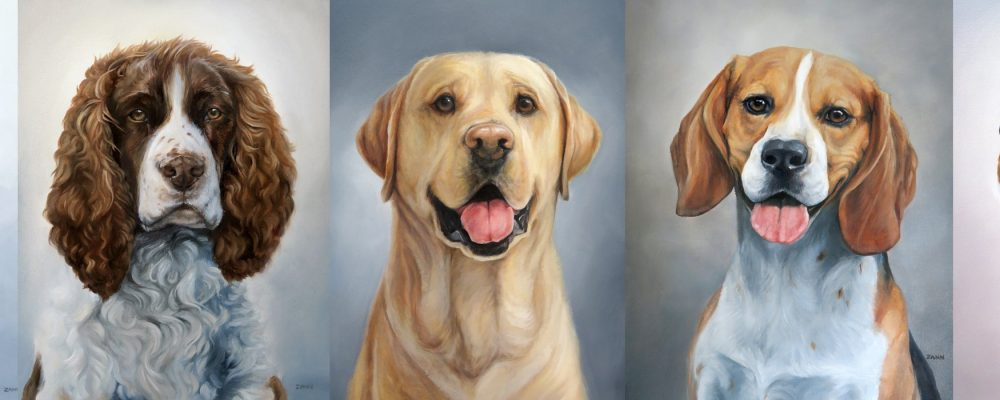 sporting dog paintings by zann