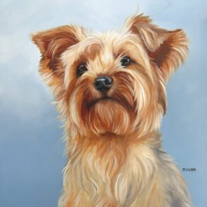 Yorkshire terrier painting by Zann Hemphill