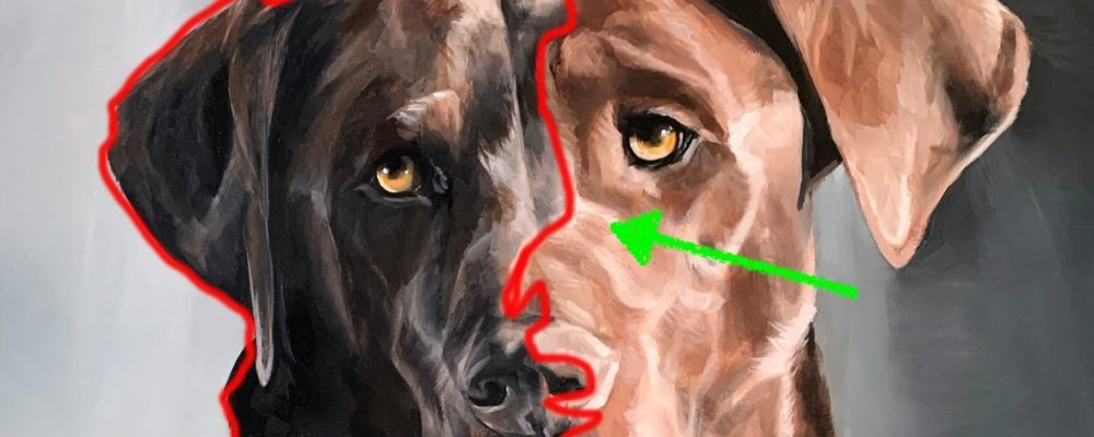 Oil Dog Painting Analysis