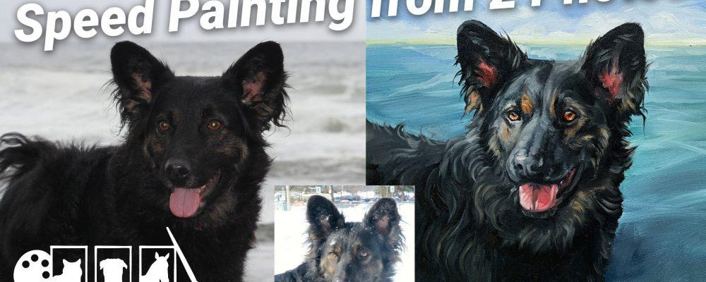 pet portrait speed painting video