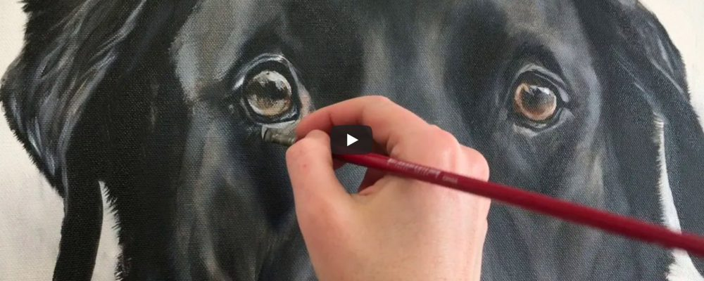 Dog Eye Painting Oil Process Video