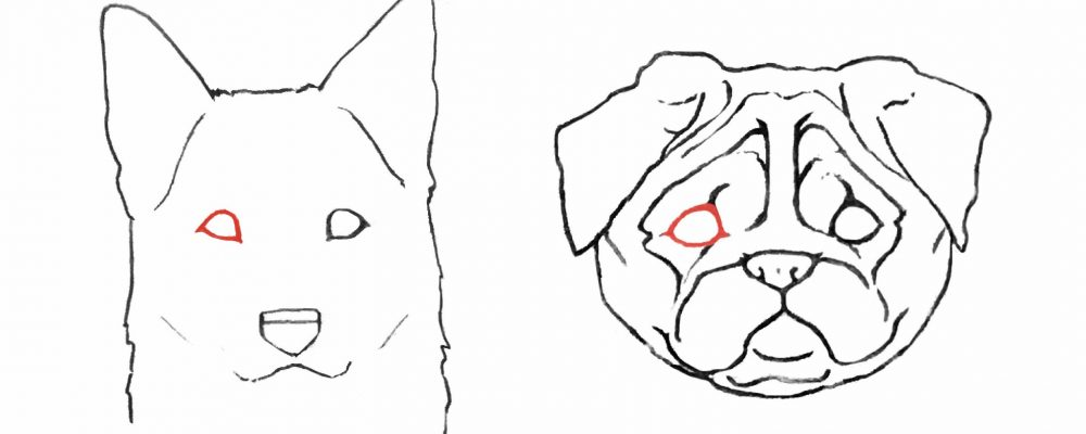 dog eye triangle drawing